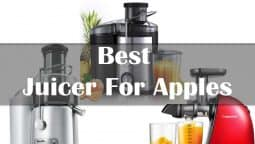 Things to consider before buying the Best Juicer For Apples
