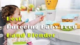 Find The Best Hand Blender For Pureeing Baby Food With Expert Review