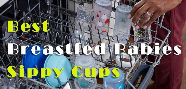 Things To Consider Before Buying The Best Sippy Cups For Breastfed Babies