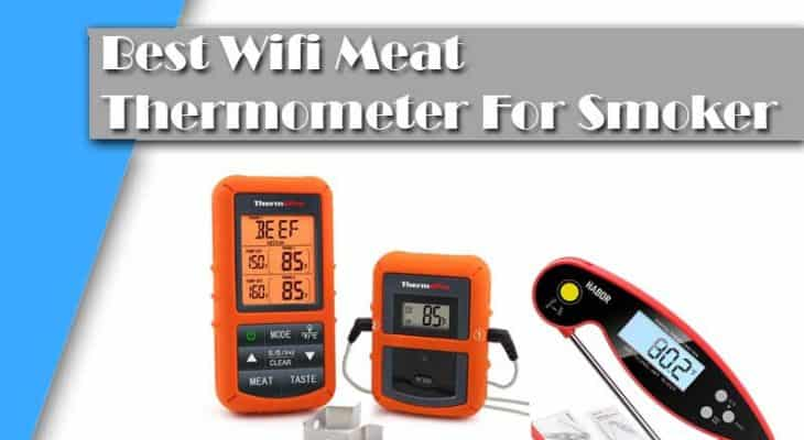 Find The Best Wifi Meat Thermometer For Smoker To Check Your Cooking Meat